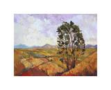 Summer Eucalyptus Giclee Print by Erin Hanson