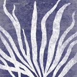 Reef IV Impressão giclée por Maria Mendez