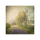 Sweet Road Giclee Print by Dawne Polis