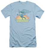 Hawkman - Hawkwoman (slim fit) T-Shirt