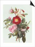 Still Life with Roses Posters by Georgius Jacobus J. van Os