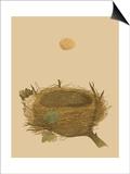 Antique Nest and Egg II Kunst av Reverend Francis O. Morris