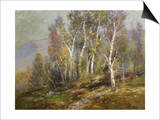 Autumn Birches in the Catskills Posters by Edward B. Gay