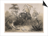 British in India Shooting a Tiger from Elephants Prints by Captain G.f. Atkinson