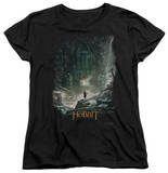 Womens: The Hobbit: The Desolation of Smaug - At Smaug's Door T-shirts