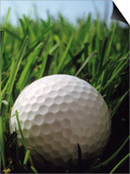 Close-up of Golf Ball in Grass Poster by Henryk T. Kaiser