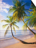 Pigeon Point Beach, Island of Tobago Prints by George H.H. Huey