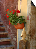 Private Staircase with Flowerpot, Malcesine, Italy Prints by Lisa S. Engelbrecht