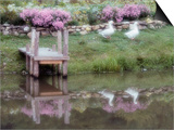 Duck Pond Prints by Susan C. Rosenthal