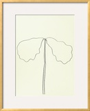 Chene Prints by Ellsworth Kelly