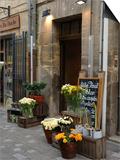 Florist Shop, Languedoc-Roussillon, France Poster by Lisa S. Engelbrecht
