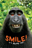 Smile! it's Selfie Time! Monkey Posters