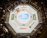 UFC 178 - Johnson v Cariaso Photographic Print by Josh Hedges/Zuffa LLC