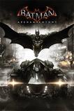Batman Arkham Knight Photographie