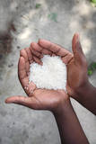 Hands Holding Rice Photographic Print by  soupstock