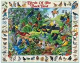 Birds Of The Back Yard 1000 Piece Puzzle Puzzle