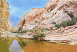 Picturesque Canyon Ein-Avdat in the Negev Desert. Clean Cold Water in the Creek Canyon. Sandstone W Photographic Print by  kavram