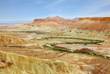 Negev Desert. Creek Meanders through the Picturesque Wilderness and Marked Bright Green Vegetation Photographic Print by  kavram