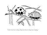 """I didn't know how to tell you, Frank, but I haven't always been a ladybug - New Yorker Cartoon Premium Giclee Print by Jake Goldwasser"