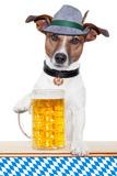 Dog Oktoberfest Photographic Print by Javier Brosch