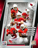 Arizona Cardinals 2014 Team Composite Photo