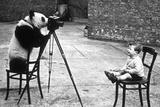 Panda Photographer Fotografisk tryk af Bert Hardy