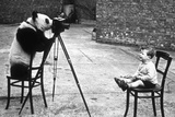 Panda Photographer Photographic Print by Bert Hardy