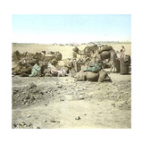 Biskra (Algeria), Caravan at Rest Photographic Print by Levy et Fils, Leon