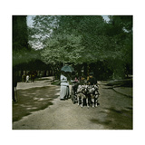 Goat-Drawn Carriage at the Jardin D'Acclimatation, Paris (XVIth Arrondissement), Circa 1895 Photographic Print by Levy et Fils, Leon