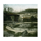 The Crocodiles of the Jardin D'Acclimatation, Paris (XVIth Arrondissement), Circa 1895 Photographic Print by Levy et Fils, Leon