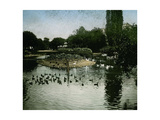 The Park of the Jardin D'Acclimatation, Paris (XVIth Arrondissement), Circa 1890-1895 Photographic Print by Levy et Fils, Leon