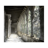 Barcelona (Spain), the Cloister of Saint Anne's Church Photographic Print by Levy et Fils, Leon