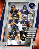 Chicago Bears 2014 Team Composite Photo