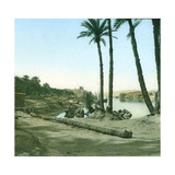 Aswan (Egypt), the First Cataract Photographic Print by Levy et Fils, Leon