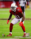 Patrick Peterson 2014 Action Photo