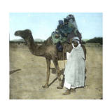 Arab Family on a Camel, Biskra (Algeria) Photographic Print by Levy et Fils, Leon