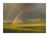 Rainbow over Boulder Mountains, Idaho Posters by Tim Fitzharris