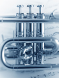 Cornet Section Photographic Print by Adam Gault