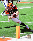 Andy Dalton 2014 Action Photo