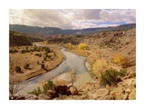 Rio Chama in autumn, New Mexico Prints by Tim Fitzharris