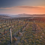 The Medieval Village and Surrounding Vineyards of Sancerre in France Being Illuminated by the Risin Photographic Print by Julian Elliott Photography