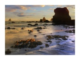 Seastacks, Lone Ranch Beach, Oregon Print by Tim Fitzharris