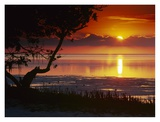 Sunset over Anne's Beach, Florida Print by Tim Fitzharris