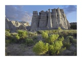 Plaza Blanca near Abiquiu, New Mexico Print by Tim Fitzharris