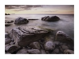 Log dump beach, Bruce Peninsula National Park, Ontario, Canada Posters par Tim Fitzharris