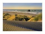 Coastline, Pistol River Beach, Oregon Prints by Tim Fitzharris