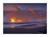 McArthur beach at sunrise, Florida Prints by Tim Fitzharris