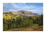 Ruby Peak near Crested Butte, Colorado Print by Tim Fitzharris