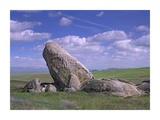 Boulders, Carrizo Plain National Monument, California Prints by Tim Fitzharris