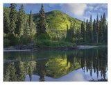 Pine River, Hart Ranges, British Columbia, Canada Art by Tim Fitzharris